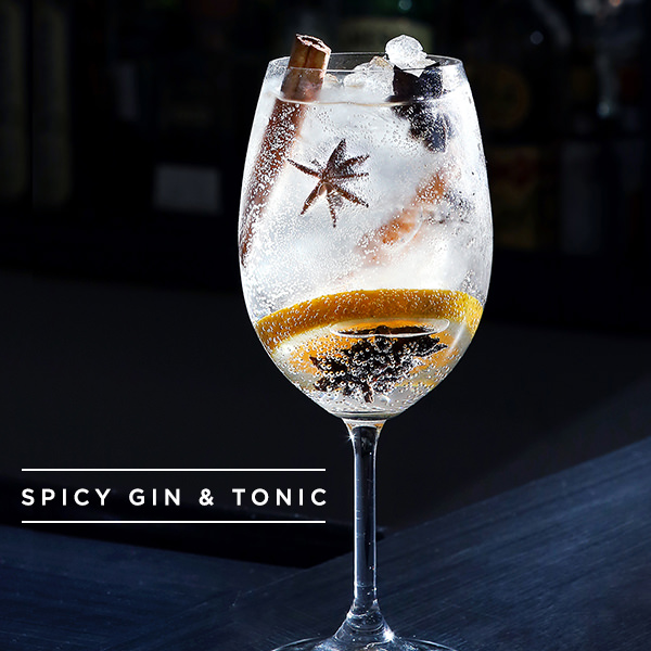 receita-drink-brothers-bar-spicy-gin-and-tonic