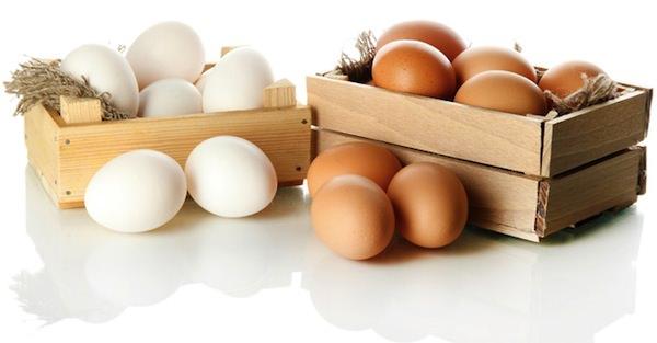 ovos-capa
