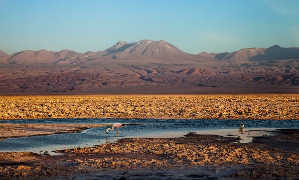 """Foto da série """"Atacama"""""""